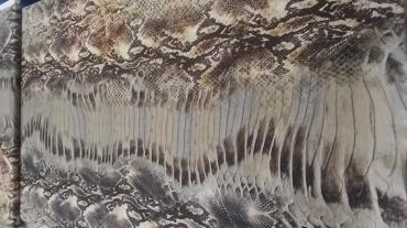 Μεταξωτο κρεπ ντεσιν σχεδιο Cavalli